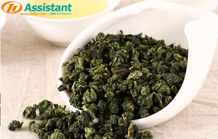 How-To-Process-Oolong-Tea-Tieguanyin-Tea