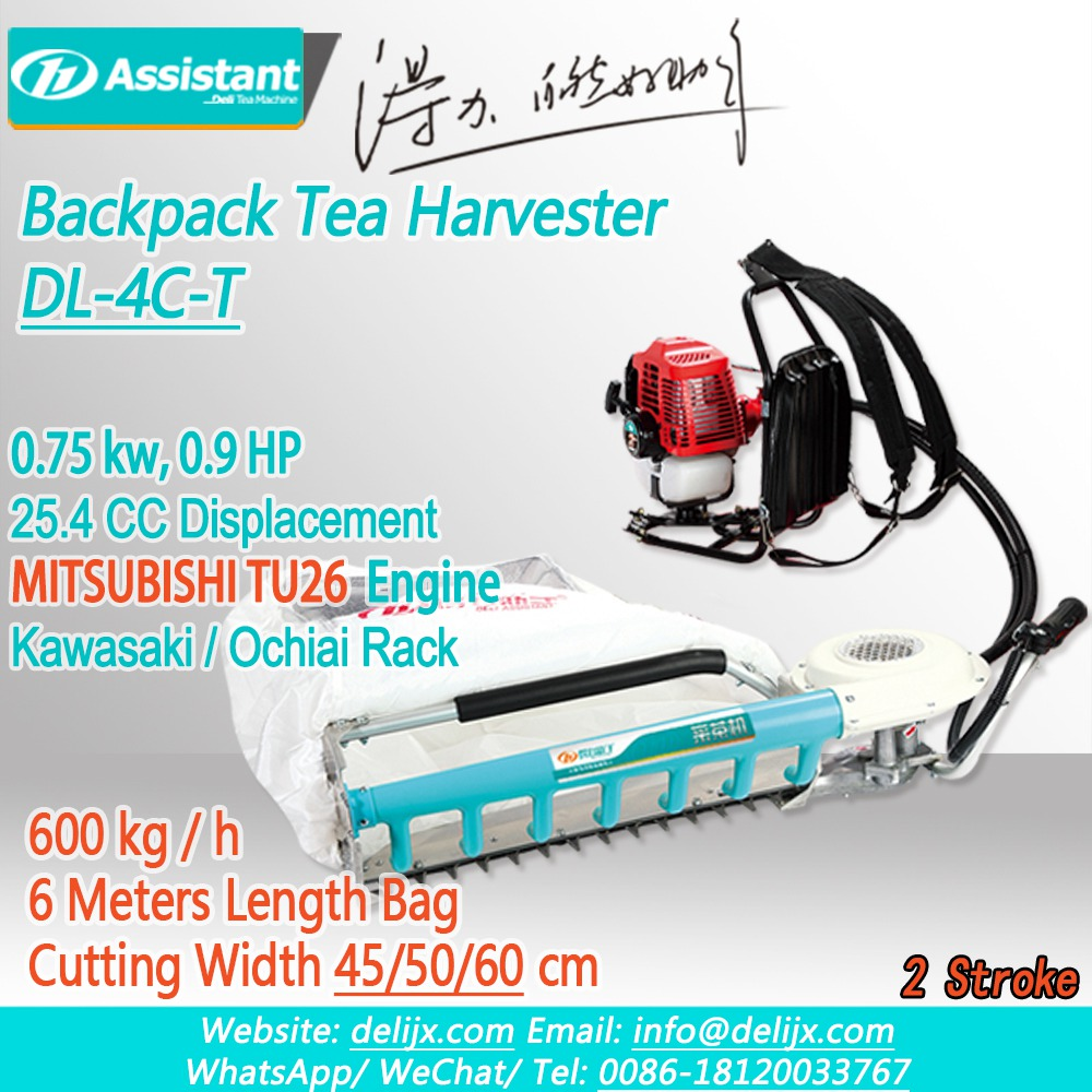Cina Backpack Type Tea Leaf Plucking Machine With MITSUBISHI TU26 Engine DL-4C-T pabrikan