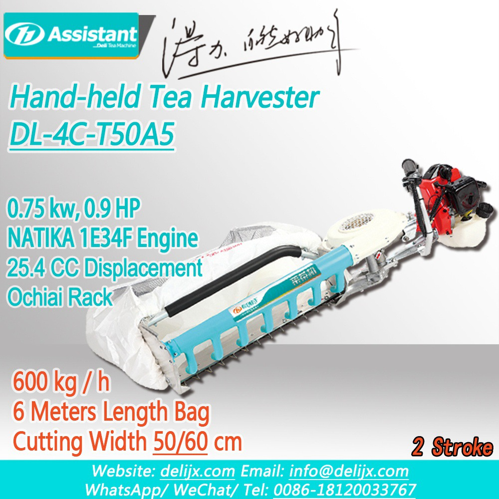 Cina Hand-Held Type 2 Stroke Tea Leaf Harvesting Machine With NATIKA Engine DL-4C-T50A5 pabrikan