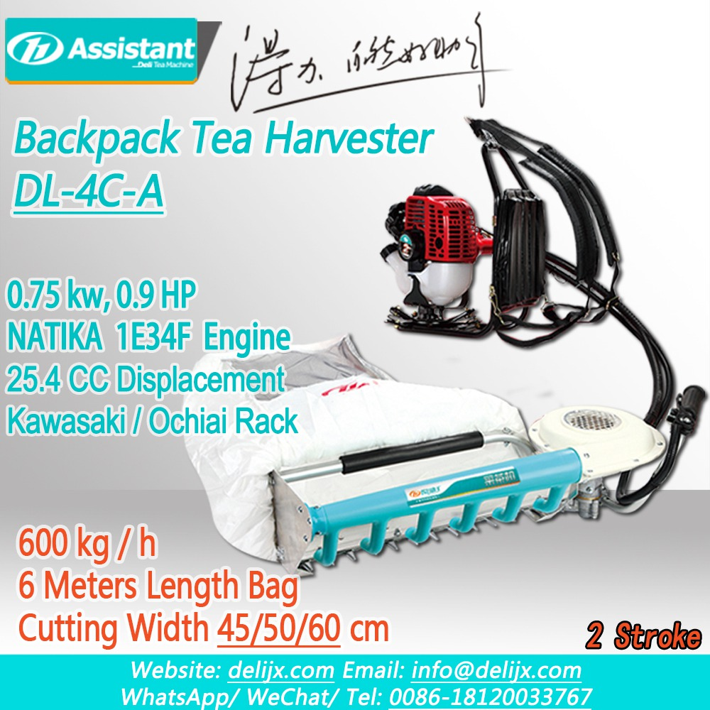 China NATIKA 2 Stroke Engine With 600mm Kawasaki Rack Tea Plucking Machine DL-4C-60A pengilang