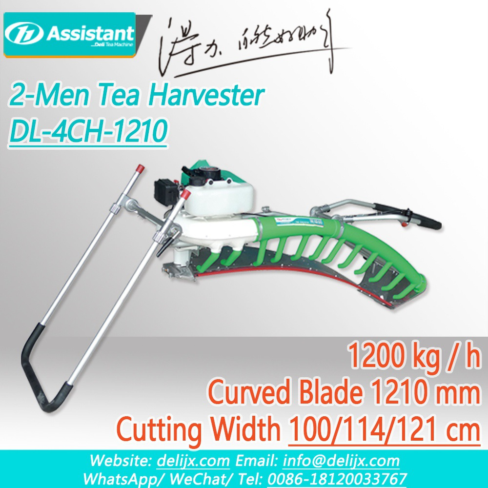 Cina Double-Men Used Curved Blade Ochiai V8 2-Stroke Tea Plucking Machine DL-4CH-1210 pabrikan