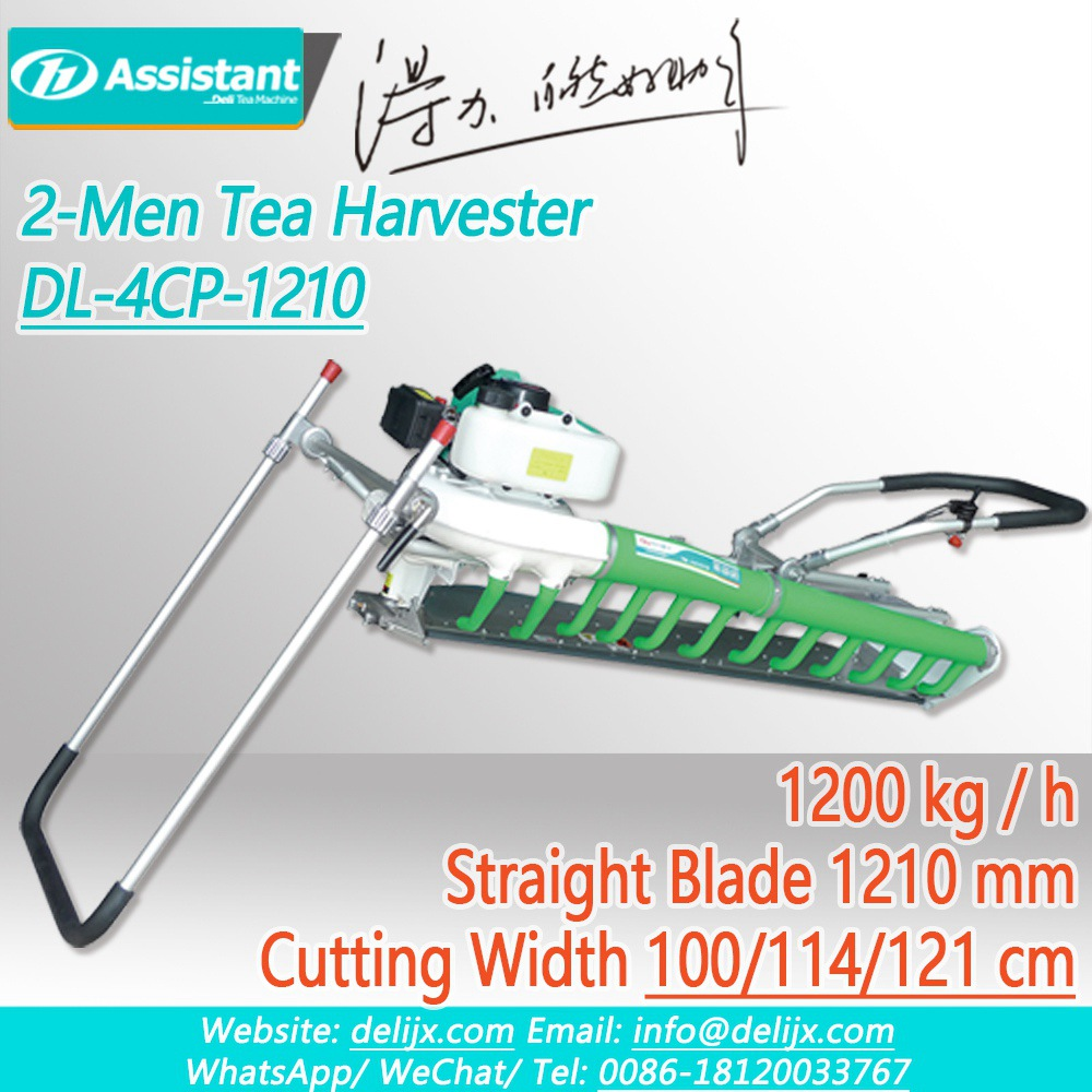 China 2-Men Used Straight Blade 2 Stroke Tea Leaf Harvester Machine DL-4CP-1210 pengilang