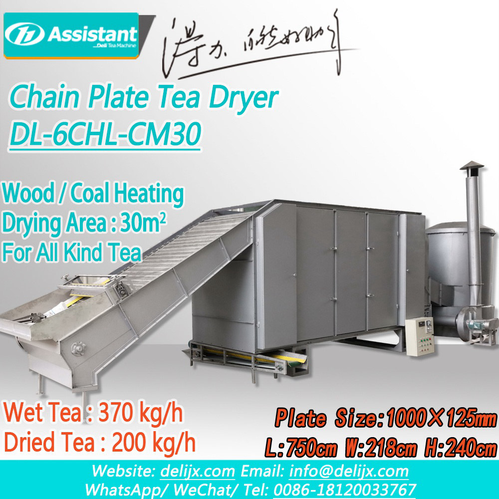 Trung Quốc Wood/Coal Heating Continuous Chain Plate Tea Drying Machine DL-6CHL-CM30 nhà chế tạo