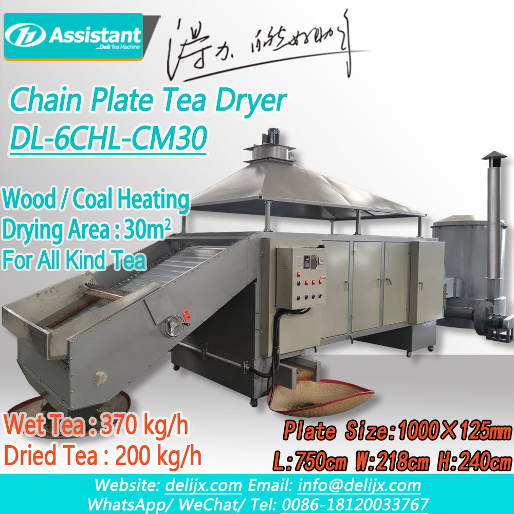 Green Tea Leaf Drying Machine