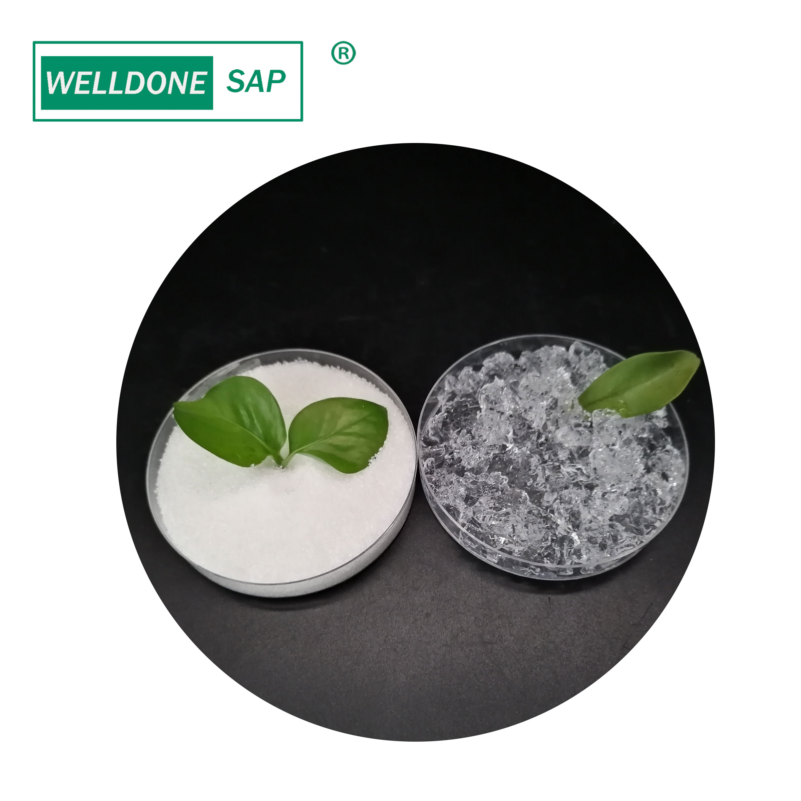 Agriculture grade Potassium Polyacrylate For Seed Coating SAP