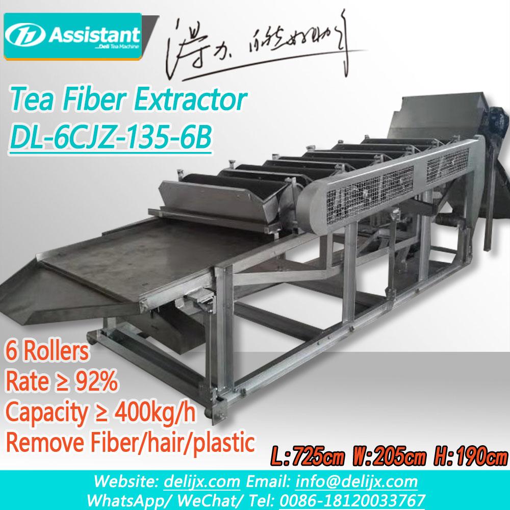 Çin Çay Elektrostatik Tozu Silinən Təmiz Maşın DL-6CJZ-135-6B istehsalçı