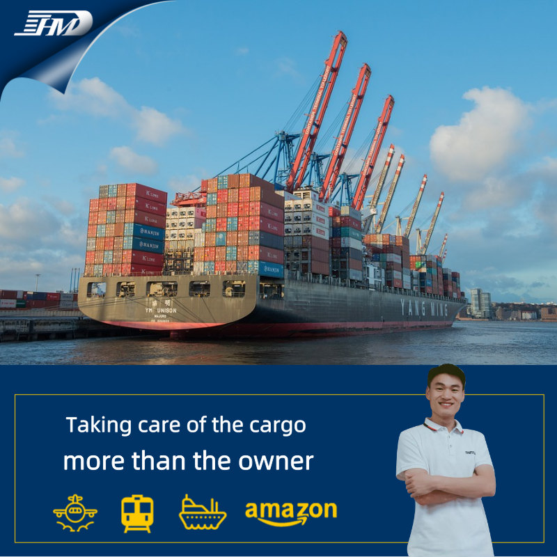 cheap sea freight forwarder China to New zealand